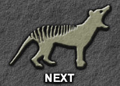 forward to: What is a Thylacine? (page 2)
